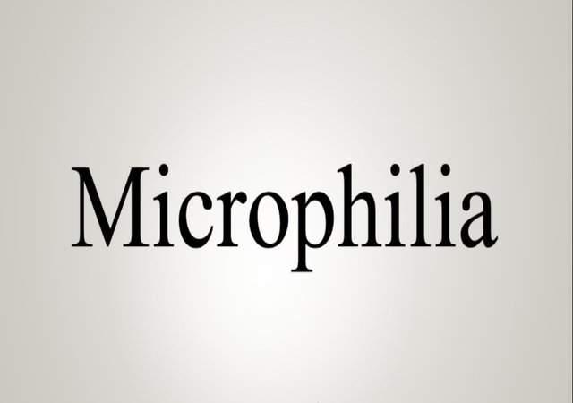 Microphilia