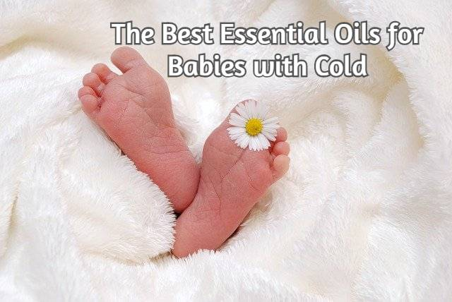 Essential Oils for Babies with Cold